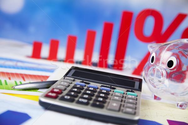 Prozentsatz natürlichen farbenreich Zeichen rot Finanzierung Stock foto © JanPietruszka