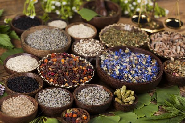 свежие травы медицина Vintage Сток-фото © JanPietruszka