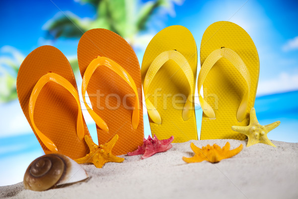 Toys for the beach, vacation Stock photo © JanPietruszka