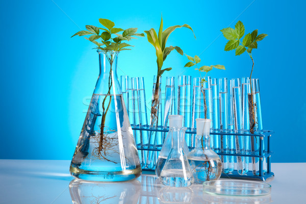Laboratuvar biyo organik modern tıbbi hayat Stok fotoğraf © JanPietruszka