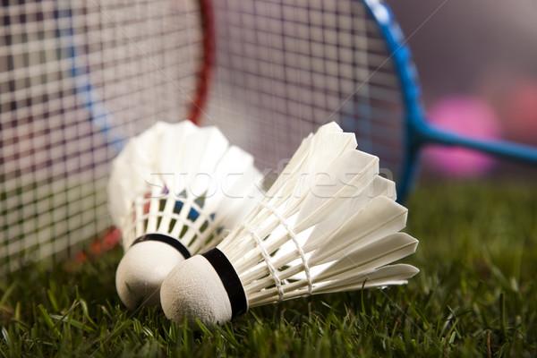ストックフォト: ゲーム · スポーツ用品 · 自然 · カラフル · スポーツ · サッカー