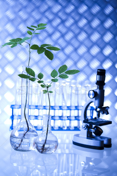 Laboratório bio orgânico moderno médico vidro Foto stock © JanPietruszka