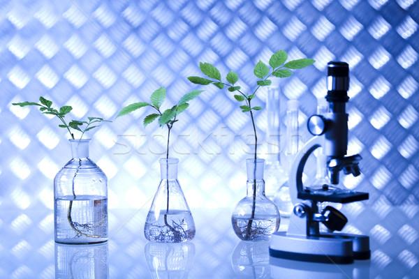 Laboratorium bio organisch moderne medische glas Stockfoto © JanPietruszka