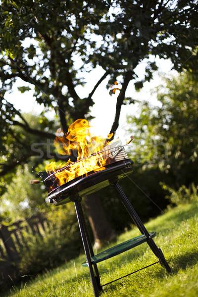 Grill flame, hot burning grill Stock photo © JanPietruszka