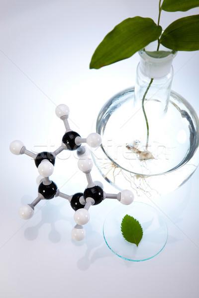 Laboratorio bio orgánico moderna médicos vida Foto stock © JanPietruszka