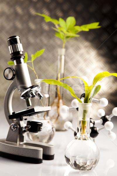 Laboratório bio orgânico moderno medicina ciência Foto stock © JanPietruszka