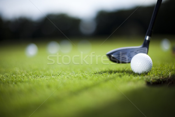 Girl playing golf on grass in summer Stock photo © JanPietruszka