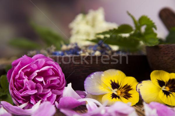 Mesa de madera hierbas naturaleza belleza Foto stock © JanPietruszka