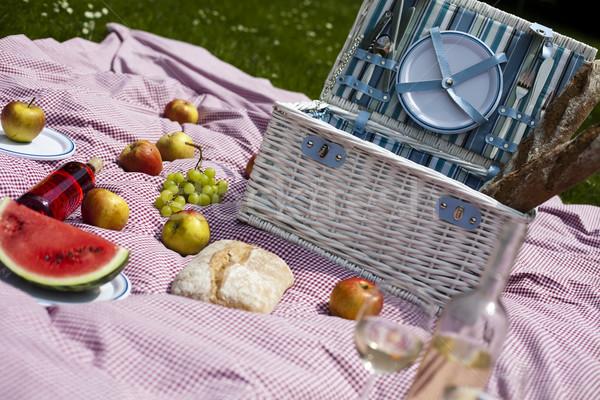 Piknik sepeti bahar renkli canlı bahar çim Stok fotoğraf © JanPietruszka