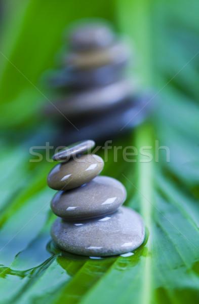 Naturaleza muerta piedra zen ambiente resumen Foto stock © JanPietruszka