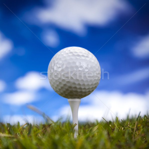 Golf ball on green grass over a blue sky  Stock photo © JanPietruszka