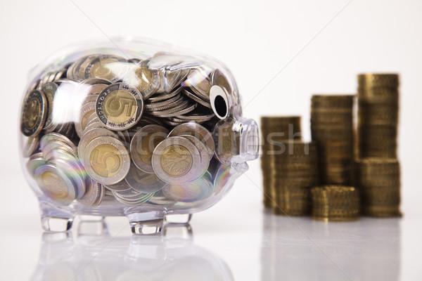 свинья банка деньги монеты окна Финансы Сток-фото © JanPietruszka