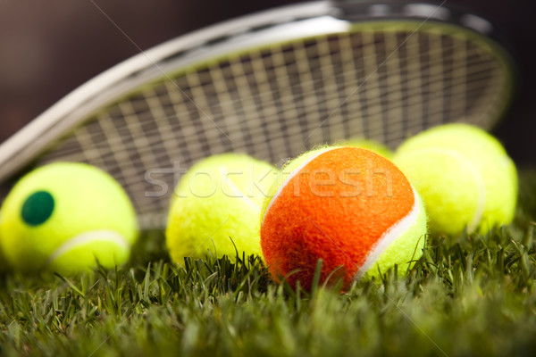 Game, Sports Equipment, natural colorful tone Stock photo © JanPietruszka