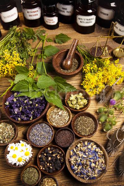 自然 カラフル 自然 美 薬 ストックフォト © JanPietruszka