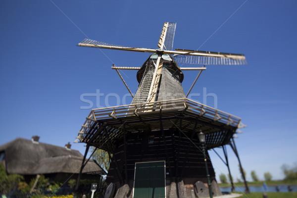 Holenderski wiatrak Niderlandy starych Holland wiosną Zdjęcia stock © JanPietruszka