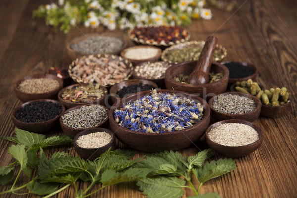 Alternative medicine, dried herbs background Stock photo © JanPietruszka