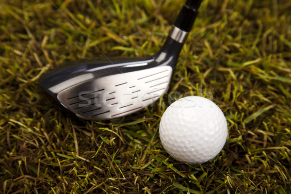 Golf ball on tee in driver  Stock photo © JanPietruszka