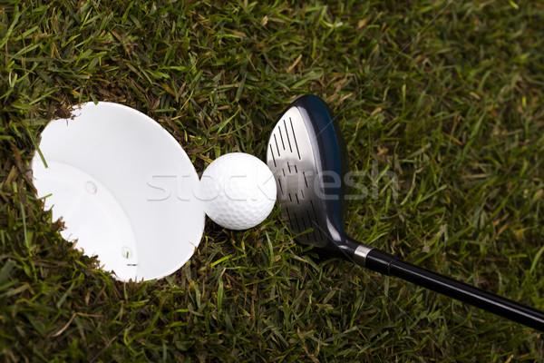 Golf ball on green meadow, driver   Stock photo © JanPietruszka