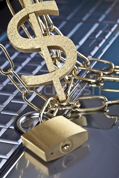 блокировка современных сеть бизнеса ноутбука Сток-фото © JanPietruszka