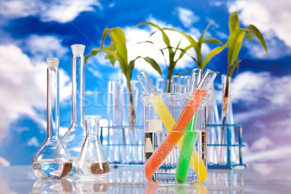 Nauki eksperyment roślin laboratorium medycznych życia Zdjęcia stock © JanPietruszka