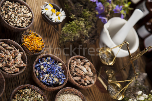 Healing herbs on wooden table, mortar and herbal medicine  Stock photo © JanPietruszka