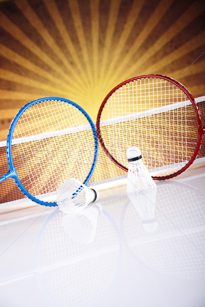 Shuttlecock on badminton racket  Stock photo © JanPietruszka