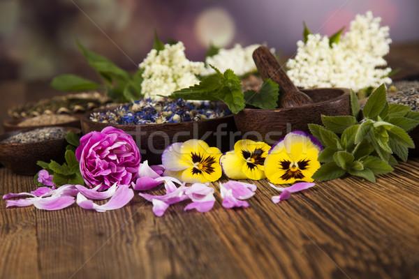Alternative medicine, dried herbs background Stock photo © JanPietruszka
