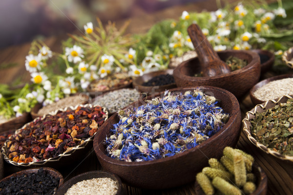 Alternatieve geneeskunde gedroogd kruiden natuurlijke medische natuur Stockfoto © JanPietruszka