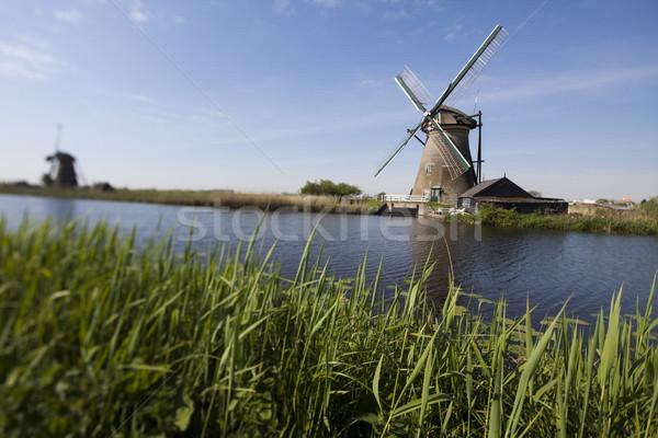Szélmalom Hollandia holland égbolt fű nyár Stock fotó © JanPietruszka