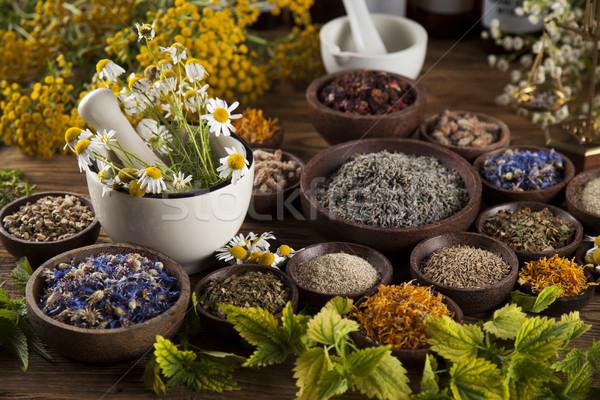 Medicina alternativa secado hierbas escritorio atrás Foto stock © JanPietruszka