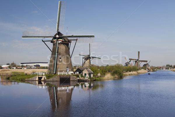 традиционный старые Нидерланды Windmill весны трава Сток-фото © JanPietruszka