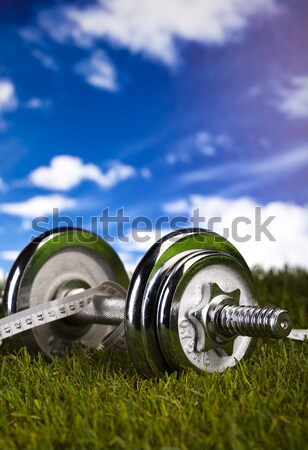 Dumbell and green grass Stock photo © JanPietruszka