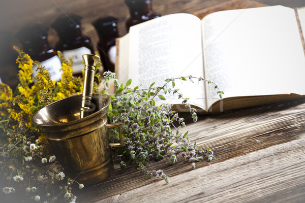 Alternative medicine, dried herbs Stock photo © JanPietruszka