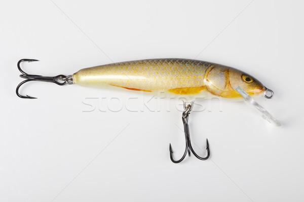 Coleção voar pescaria naturalismo comida natureza Foto stock © JanPietruszka