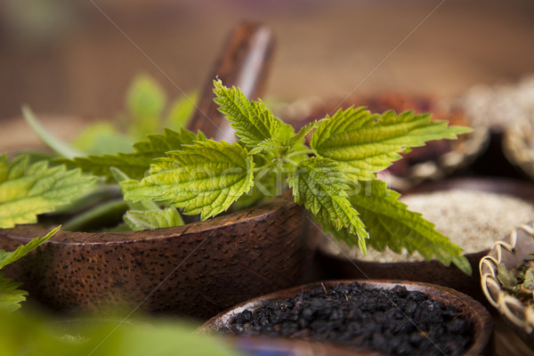 Herbal medicine, wooden table background Stock photo © JanPietruszka