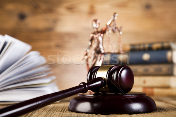 Mallet of judge Stock photo © JanPietruszka