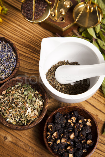 Natural medicine, herbs, mortar, natural colorful tone Stock photo © JanPietruszka