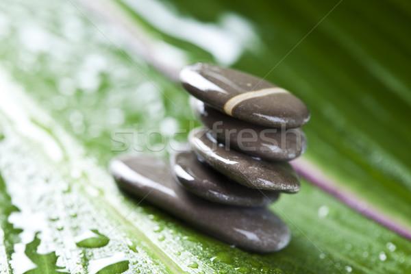 Grup taşlar zen atmosfer bahçe Stok fotoğraf © JanPietruszka
