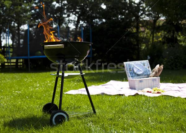 Grillen zomer weekend heldere kleurrijk levendig Stockfoto © JanPietruszka