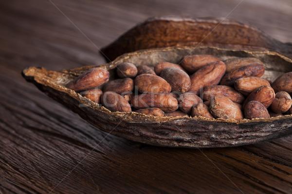 Peul houten tafel houten hout blad groene Stockfoto © JanPietruszka