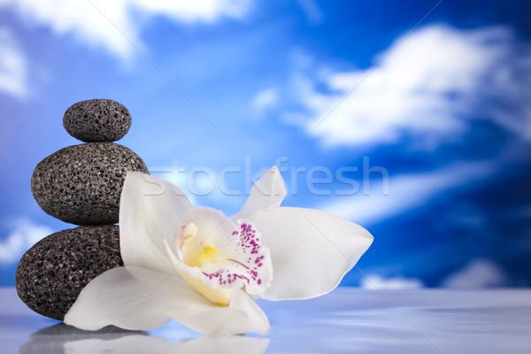 Orchidee bloem zen stenen groep rock Stockfoto © JanPietruszka