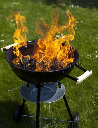 Stek grillowanie lata weekend jasne kolorowy Zdjęcia stock © JanPietruszka