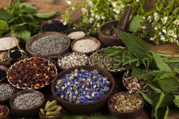 Herbs medicine and vintage wooden background Stock photo © JanPietruszka