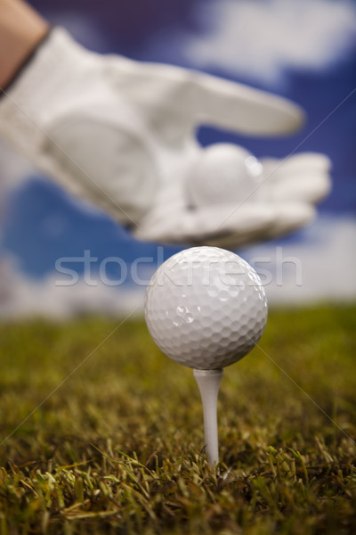 Hand and golf ball Stock photo © JanPietruszka