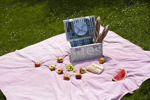 Picknick Picknick-Korb legen Flasche Brot Zuckerrohr Stock foto © JanPietruszka