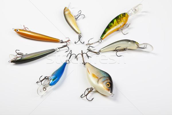 Ensemble volée pêche naturelles alimentaire nature Photo stock © JanPietruszka
