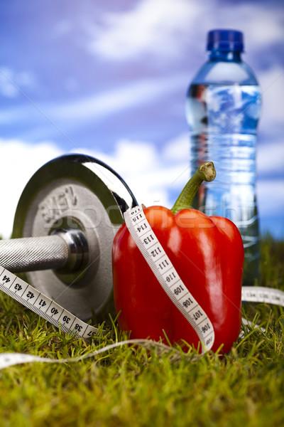 Zdjęcia stock: Diety · fitness · witaminy · zdrowia · wykonywania · energii