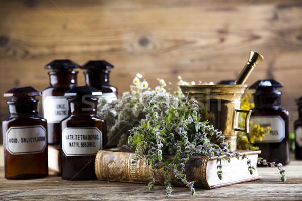 薬 ボトル ハーブ 自然 カラフル 自然 ストックフォト © JanPietruszka
