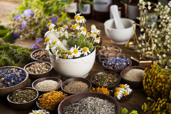 Natural medicine, herbs, mortar on wooden table background Stock photo © JanPietruszka