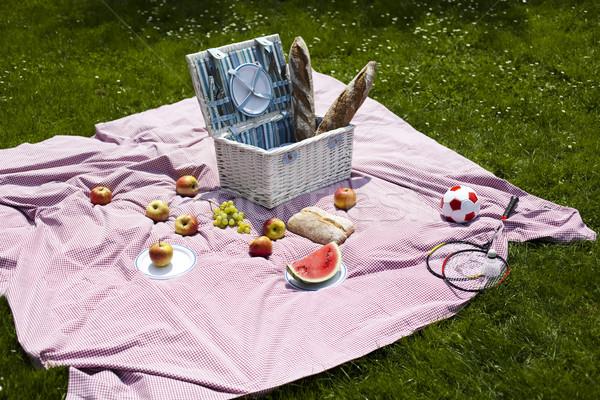 Picnic on the grass, springtime colorful vivid theme Stock photo © JanPietruszka